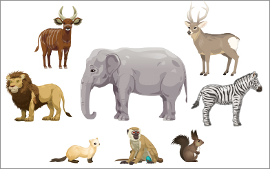 マングローブと不思議なクマたち イメージ画像6